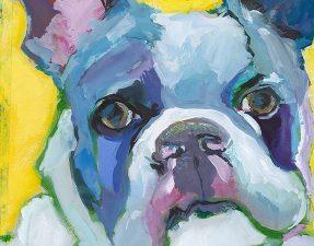 170605_Sktchy_Dog-catherine-hinrichsFeature