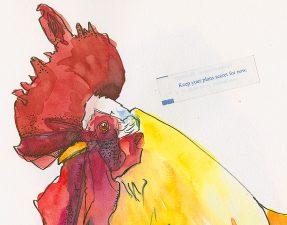 170629-sktchy-ChickenSpreadFortunehandbookwcCRbrFeat