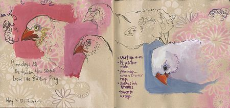 130515_Finches