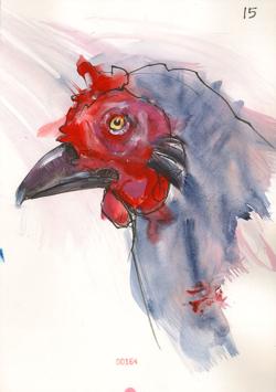 140713_15_Chicken