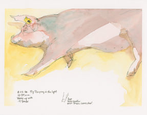 Above: Sketch of a sleeping pig, pen and watercolor on a 9 x 12 inch watercolor board. During class you'll see me demonstrate how to work with pen and watercolor in close quarters even at crowded events like the Minnesota State Fair. (The demos include active animals so that you can see how it's possible to catch a likeness even when your subject is moving.)