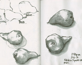 Quick sketches of some Bosc Pears with a Pentel dye-based brush pen. A Niji water brush was used to draw out the shading from the water-soluble ink lines. (All in the largest portrait Hahnemühle Nostalgie Sketchbook—the paper is a dream to work on with the PPBP and its cousins.)
