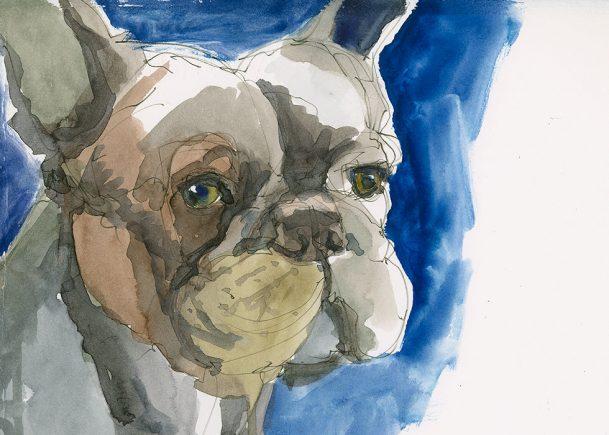180819-sktchy-laura-anderson-dog-fabrianohpCRAltBRFeat