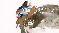 180830-2018-fair-34-guinea-hen-fabri-300-hpCRAltBRFeat