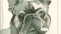 181215_2-laura-anderson-dog-fab-artistico-cpCRAltBRCRFeat