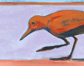 2007-30-birds-shorebird-acryl-canvasbdCRAltBRFeat