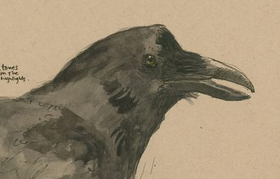 190725-1-bell-Raven-strath-tanCRAltFixfeat