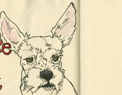 200124-1-SKTCHY-dog-VIV-ROCKS-gutenbergCRALTFeat