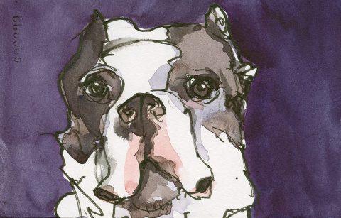 181230-sktchy-Catherine-heinrichs-dog-hahn-wcCRAltBRFeat