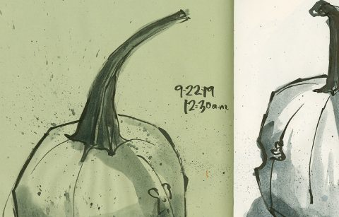 190922-2-pumpkin-brush-pen-ink-wash-green-lined-2CRALTDetail