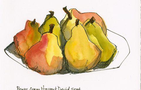 191221-1-pears-fabriano-hpCRAltBRCRFeat